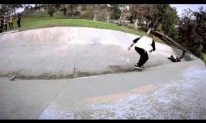Elephant Brand Skateboards: Fun!